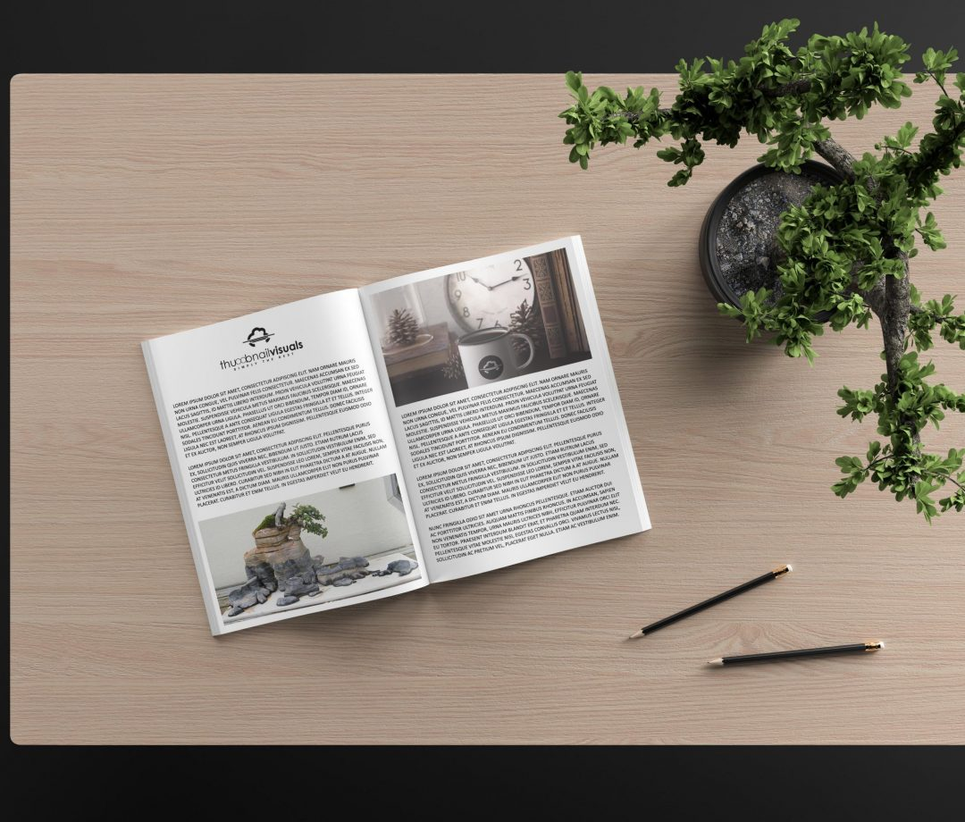 This is a Thumbnail Visuals front designed brochure